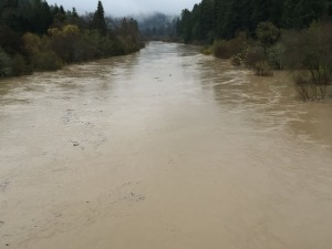 Waiting for the river to crest and waters to recede Guerneville Residents keeping an eye on the river's swollen banks.  Friday, December 12th 2014