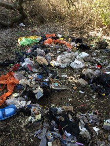 Trash at historic National Park upsets locals - prompting action from Park Officials