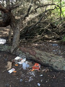 Crews are working to clean up San Francisco's Lands End after mounds of trash, beer cans, bottles, dirty clothing and what appears to be a homeless encampment was found at the park.